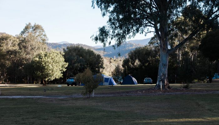 Eildon Pondage Holiday Park